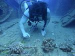 Hawaii Scuba divng 66
