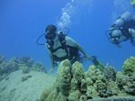 Hawaii Scuba divng 21