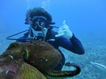 Hawaii Scuba divng 78