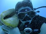 Hawaii Scuba divng 76
