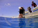 Hawaii Scuba divng 03