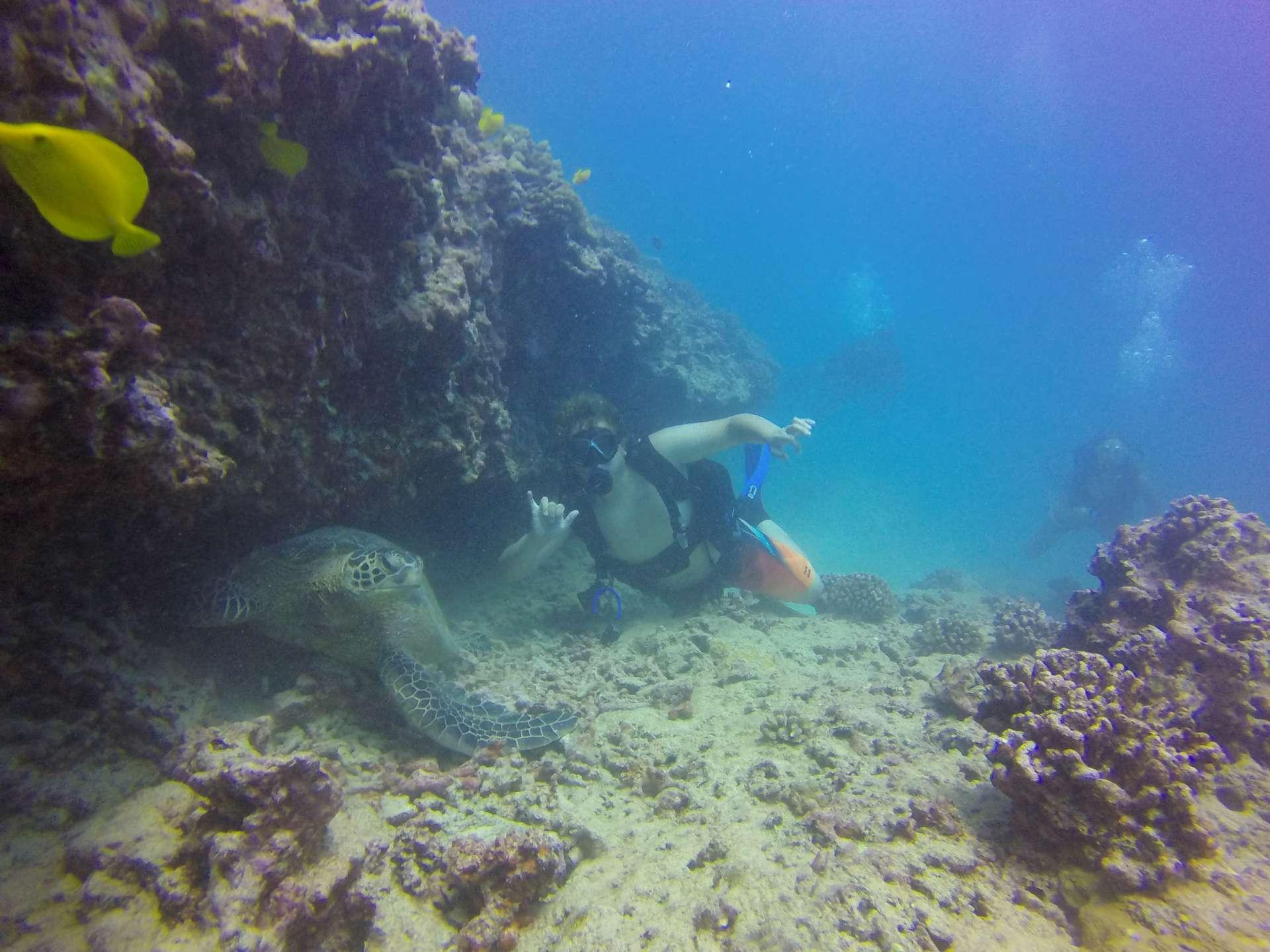 72cm Regulator Necklace Scuba Diving 10cm Double Hose Holder with Clip