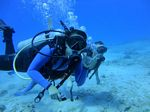 Hawaii Scuba divng 75