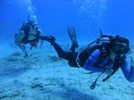 Hawaii Scuba divng 94