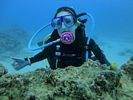 Hawaii Scuba diving 14