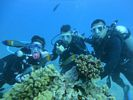 Hawaii Scuba diving 46